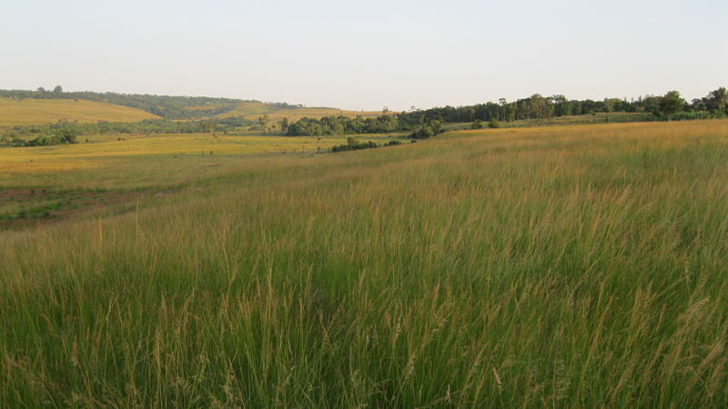 future site of Twegashe Primary School on land donated by the village